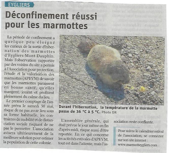 Article Dauphiné-Libéré du 4 mai 2020