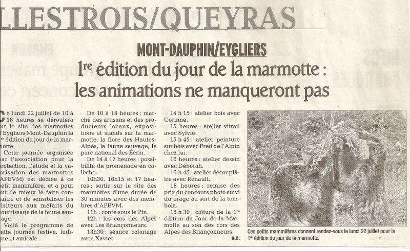 Marmottes 20 juillet 2013 1
