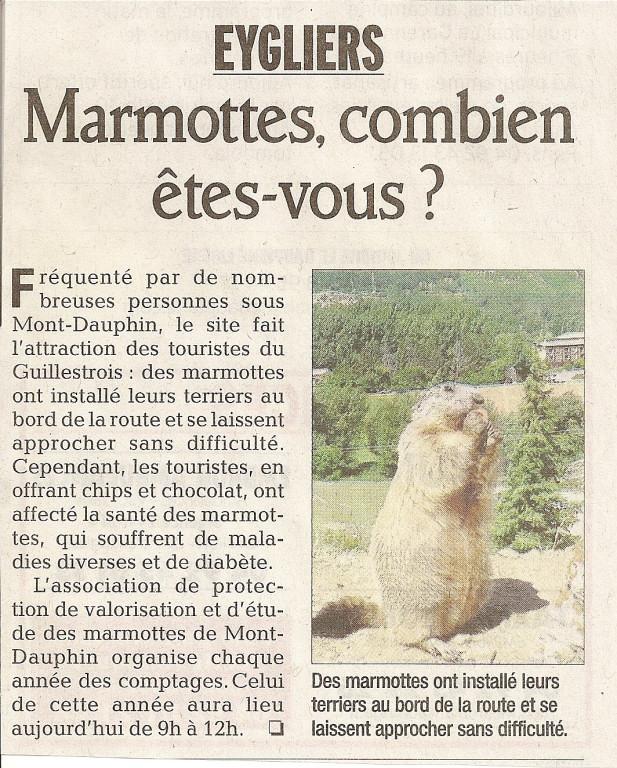 Marmottes 27 mai 2012 1