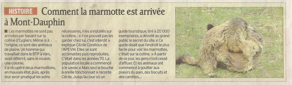 Marmottes 29 mai 2012 1 1