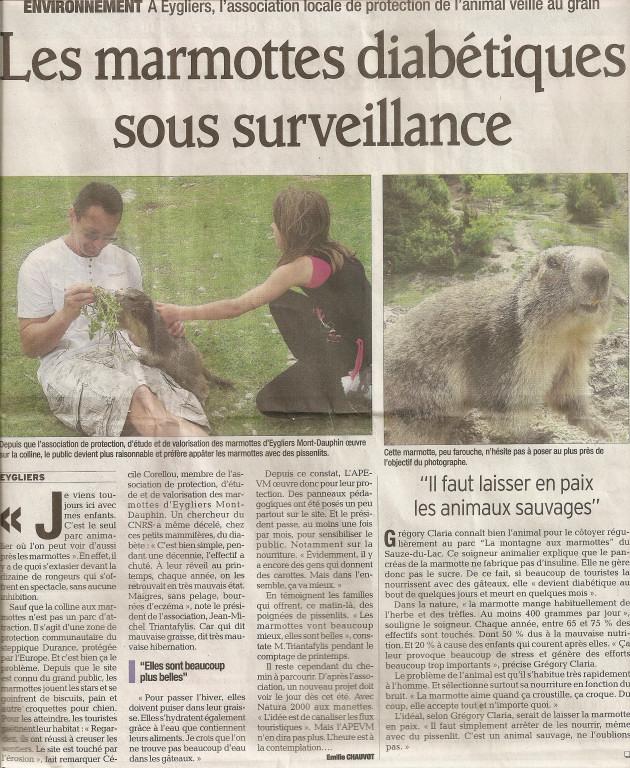Marmottes 29 mai 2012 2 1