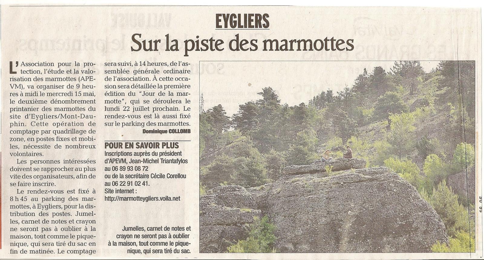 Marmottes 4 mai 2013 1
