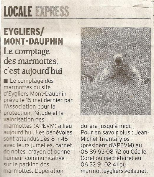 Marmottes 8 juin 2013 1