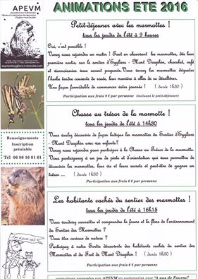 Sortie marmottes